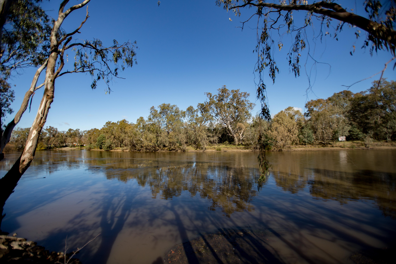 The Murray river between Albury and Wodonga