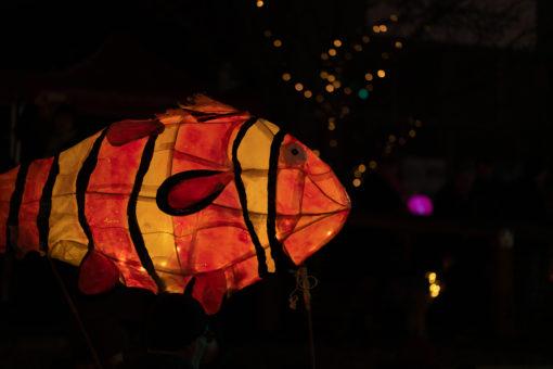 Nemo Lantern