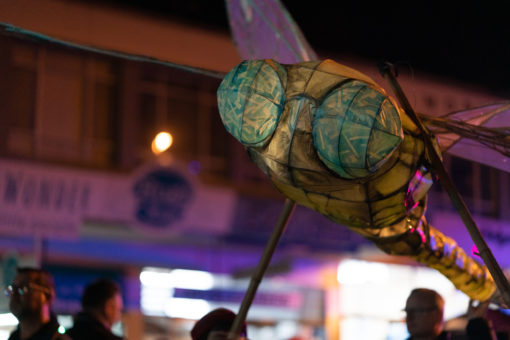 Dragonfly lantern at the parade for the Wintern Solstice Celebration