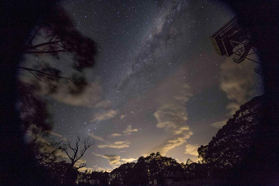 Starry night at Mt Donna Buang, Warburton while chasing an Aurora Australis. © Erika's Way Photography