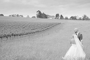 Wedding Photo-shooting in the hay field with the vines in the background @Wild Dog Winery, Warragul. © Erika's Way  Photography in Melbourne