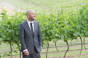 The groom waiting in the vineyard for his bride © Erika's Way Photography